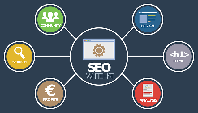 improve your video SEO strategy